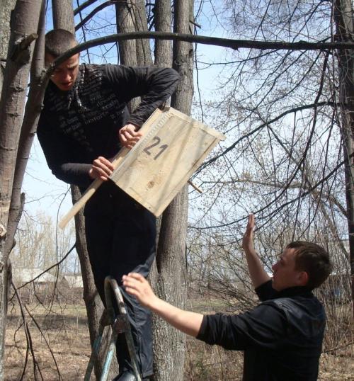 Картинки добрые дела в природе